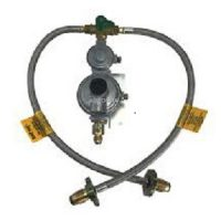 dual gas regulator